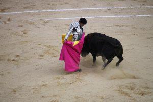 The Peruvian Andres Roca succeed in Las Ventas