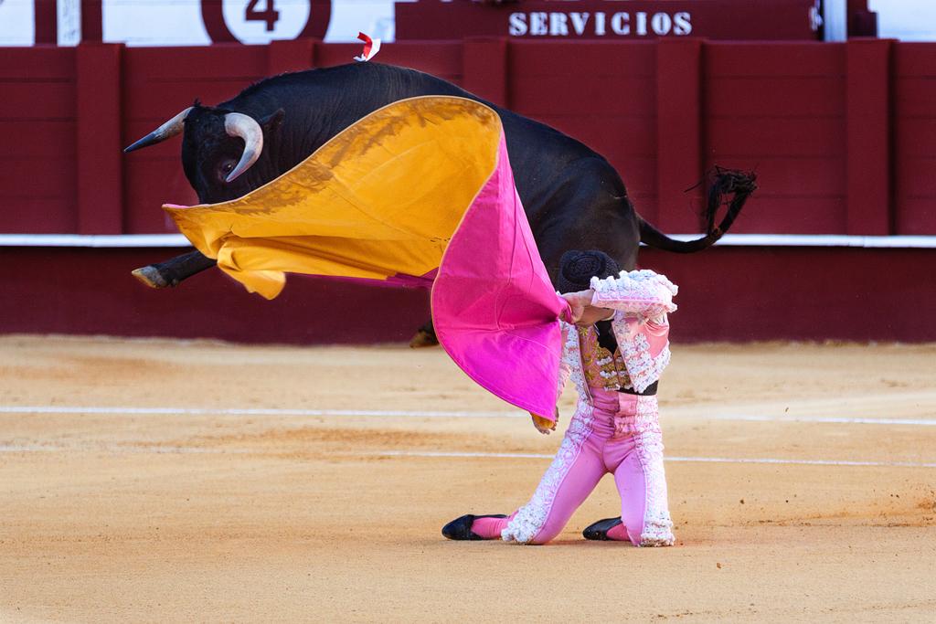 Bullfighting Schools in Spain