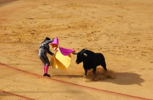 Why is bullfighting controversial?