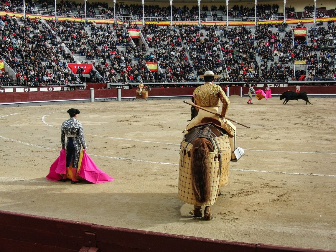 How Does Bullfighting Work?