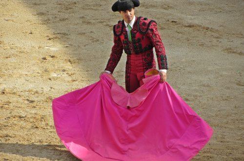 Bullfight Tickets Season 2020 - Las Ventas Bullring Madrid